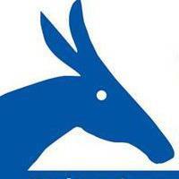 Durham Dems donkey profile pic